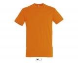 Herren T-Shirt REGENT
